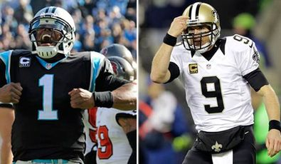 Newton-brees